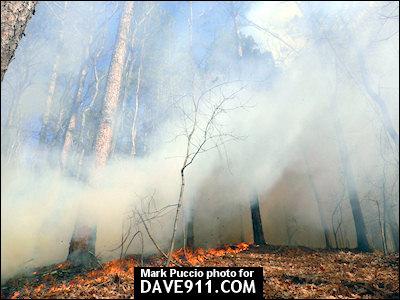 DAVE911.COM: Wildland Firefighting Class